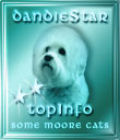 Dandie Star **TopInfo Award for Content
